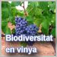 Jornada de biodiversitat en vinya