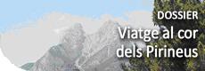 Dossier especial: Viatge al cor dels Pirieus